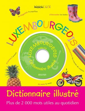 Dictionnaire illustre
