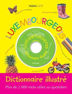 Dictionnaire illustre